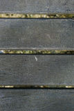 Ξύλινο πίσω έδαφος Στοκ εικόνες με δικαίωμα ελεύθερης χρήσης