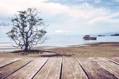 Ξύλινο πεζούλι με το defocus το δέντρο παραλιών και το παλαιό ξύλινο υπόβαθρο σκαφών, εκλεκτής ποιότητας τόνος Στοκ φωτογραφία με δικαίωμα ελεύθερης χρήσης