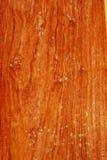 Ξύλινο πρότυπο Στοκ φωτογραφίες με δικαίωμα ελεύθερης χρήσης