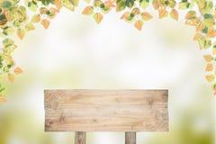 Ξύλινο σημάδι με το όμορφο φύλλο φθινοπώρου για το BA σχεδίου εποχής φθινοπώρου Στοκ Εικόνες