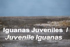 Ξύλινο σημάδι που προστατεύει μια κλειστή να τοποθετηθεί περιοχή, Galapagos Στοκ Εικόνες
