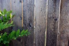 Ξύλινο σκηνικό Στοκ φωτογραφία με δικαίωμα ελεύθερης χρήσης
