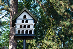 Ξύλινο σπίτι περιστεριών Στοκ Φωτογραφίες