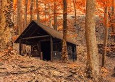 Ξύλινο σπίτι στο δάσος Στοκ εικόνες με δικαίωμα ελεύθερης χρήσης
