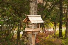 Ξύλινο σπίτι του πουλιού στο δάσος Στοκ εικόνες με δικαίωμα ελεύθερης χρήσης