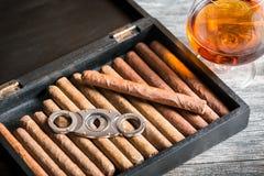 Ξύλινο σύνολο humidor των πούρων Στοκ Φωτογραφία