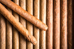 Ξύλινο σύνολο humidor των πούρων Στοκ Εικόνες