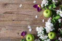 Ξύλινο υπόβαθρο με τα άσπρα άνθη και τα πράσινα μήλα Στοκ εικόνες με δικαίωμα ελεύθερης χρήσης