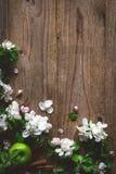 Ξύλινο υπόβαθρο με τα άσπρα άνθη και τα πράσινα μήλα Στοκ Εικόνα