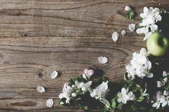 Ξύλινο υπόβαθρο με τα άσπρα άνθη και τα πράσινα μήλα Στοκ Φωτογραφίες