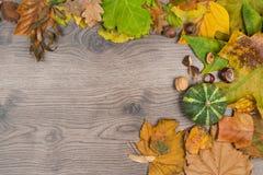 Ξύλινο υπόβαθρο με το θέμα πλαισίων φθινοπώρου Στοκ Εικόνες