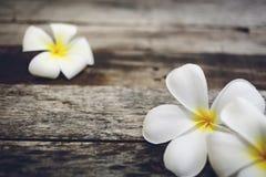 Ξύλινο υπόβαθρο με Plumeria Στοκ Φωτογραφίες