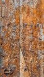 Ξύλινο υπόβαθρο πορτών με μεταλλικές σκουριασμένες βίδες Στοκ εικόνα με δικαίωμα ελεύθερης χρήσης