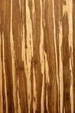 Ξύλινο υπόβαθρο σύστασης τοίχων Στοκ Εικόνα