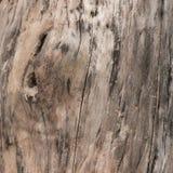 Ξύλινο υπόβαθρο Στοκ φωτογραφία με δικαίωμα ελεύθερης χρήσης