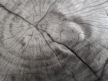 ξύλινο λωρίδα Στοκ Φωτογραφίες