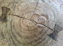 ξύλινο λωρίδα Στοκ φωτογραφία με δικαίωμα ελεύθερης χρήσης
