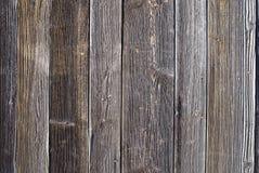 Ξύλο αγριόπευκων Στοκ Εικόνες