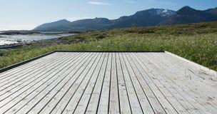 Ξύλο και ουρανός Στοκ φωτογραφία με δικαίωμα ελεύθερης χρήσης