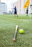 Ξύλο και σόφτμπολ ροπάλων στον τομέα χλόης Στοκ Εικόνα