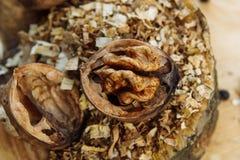 Ξύλο καρυδιάς και γλυκάνισο Στοκ Φωτογραφίες