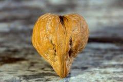 ξύλο καρυδιάς καρδιών στοκ εικόνες με δικαίωμα ελεύθερης χρήσης