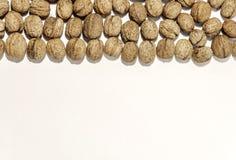 Ξύλο καρυδιάς στενό στην άσπρη χρήση επιτραπέζιου υποβάθρου Στοκ εικόνες με δικαίωμα ελεύθερης χρήσης