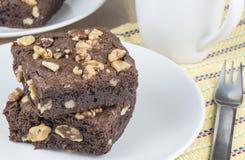 Ξύλο καρυδιάς Brownies Στοκ Εικόνες