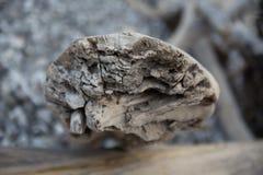 Ξύλο κλίσης Στοκ Εικόνες
