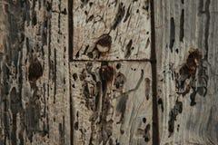 Ξύλο που φοριέται παλαιό Στοκ φωτογραφία με δικαίωμα ελεύθερης χρήσης