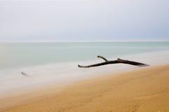 Ξύλο στην παραλία Στοκ Εικόνα