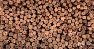 ξύλο φωτογραφικών διαφανειών στην αποθήκη εμπορευμάτων Στοκ Φωτογραφία