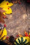 Ξύλο φύσης δώρων υποβάθρου φθινοπώρου Στοκ Εικόνες