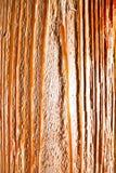 Ξύλο Στοκ Εικόνες