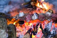 Οβελίδια του βόειου κρέατος, χοιρινό κρέας που μαγειρεύεται σε μια πυρά προσκόπων Στοκ Φωτογραφία