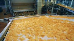 Ογκώδης βιομηχανικός μεταφορέας που μετατοπίζει τα τσιπ πατατών απόθεμα βίντεο