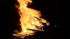 Ογκώδης φωτιά στο δάσος δέντρων σημύδων χειμερινής νύχτας απόθεμα βίντεο