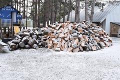 Ογκώδης σωρός της περικοπής καυσόξυλου από τα δέντρα πεύκων υλοτόμων που καλύπτονται στο ελαφρύ χιόνι Στοκ φωτογραφία με δικαίωμα ελεύθερης χρήσης
