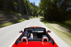 οδήγηση καμπριολέ Στοκ φωτογραφίες με δικαίωμα ελεύθερης χρήσης