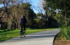 Οδήγηση ποδηλάτων ποδηλατών σε ένα πάρκο στοκ εικόνα