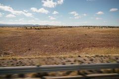 Οδήγηση της πλάγιας όψης πιάτων που κινείται μέσω της ερήμου στο αυτοκίνητο με τη θαμπάδα κινήσεων Στοκ Εικόνα