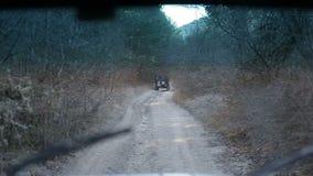Οδήγηση του πλαϊνού αυτοκινήτου throgh δασικά Drive ντεμοντέ πλαϊνά τζιπ Ομαλό μήκος σε πόδηα από από το οδικό όχημα Κάμερα φιλμ μικρού μήκους