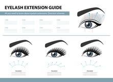 Οδηγός επέκτασης Eyelash Σχέδια κατεύθυνσης Άκρες και τεχνάσματα για την επέκταση μαστιγίων Διανυσματική απεικόνιση Infographic Π διανυσματική απεικόνιση
