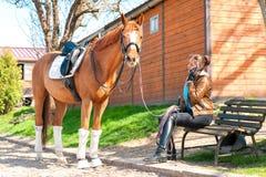 Οδηγώντας εκπαιδευτής γυναικών κοντά στο άλογο κάστανων που μιλά στο κινητό phon Στοκ Εικόνες
