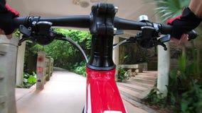 Οδηγώντας ποδήλατο γυναικών στο ίχνος στο πάρκο απόθεμα βίντεο