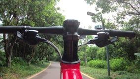 Οδηγώντας ποδήλατο γυναικών στο ίχνος στο πάρκο φιλμ μικρού μήκους