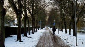 Οδηγώντας ποδήλατο στην πορεία ποδηλάτων που καλύπτεται στο χιόνι και τον πάγο κατά τη διάρκεια του χειμώνα Στοκ Φωτογραφίες