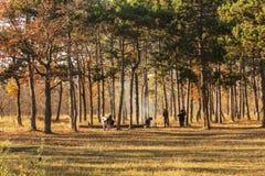 Οδησσός, Ουκρανία CIRKA 2018: Φωτιά forest Company, οικογένεια α στοκ φωτογραφίες
