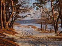 οδική άνοιξη Στοκ Φωτογραφίες