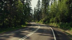 Οδική κάμψη αυτοκινήτων στο δάσος mountainuos και το σημάδι ορίου ταχύτητας 4K σταθεροποιημένος αναρτήρας διακινούμενος πυροβολισ